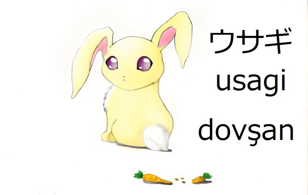anime_bunny_by_aras_chan-d462v87